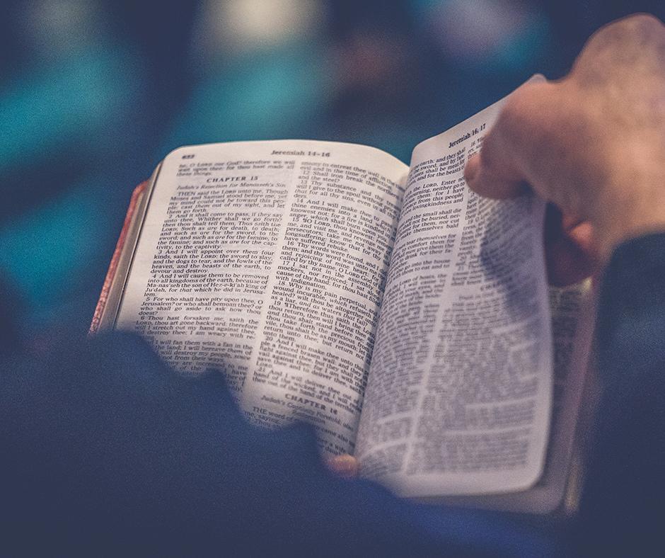 Această imagine are atributul alt gol; numele fișierului este biblia-in-versuri-1.jpg